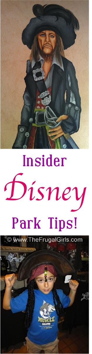 Disney Insider Park Tips