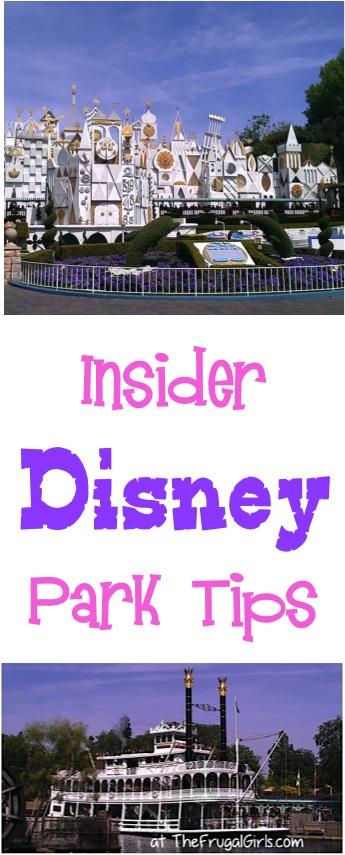 Insider Disney Park Tips