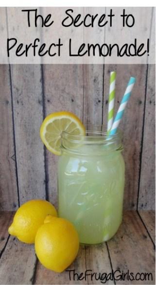 Frozen Lemonade Cubes from TheFrugalGirls.com