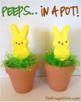 Peeps in a Pot