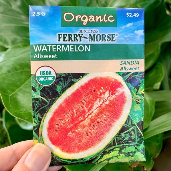 Watermelon Gardening Ideas