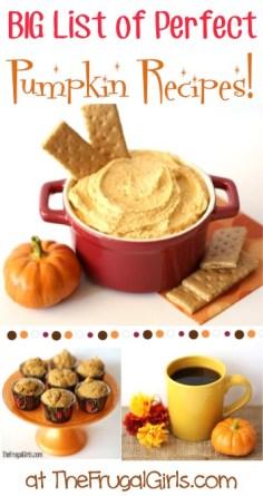 BIG List of Perfect Pumpkin Recipes at TheFrugalGirls.com