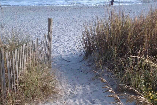 Myrtle Beach Travel Tips and Things to Do   TheFrugalGirls.com