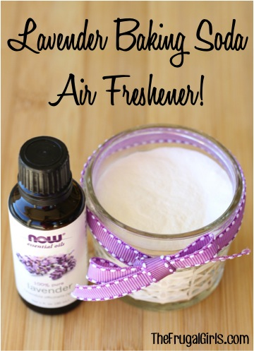 Lavender Baking Soda DIY Air Freshener from TheFrugalGirls.com