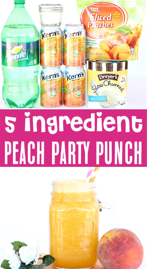 Party Punch Recipes - Crowd Pleasers Kids and Adults Will Love - Sparkling Peach Punch Recipe