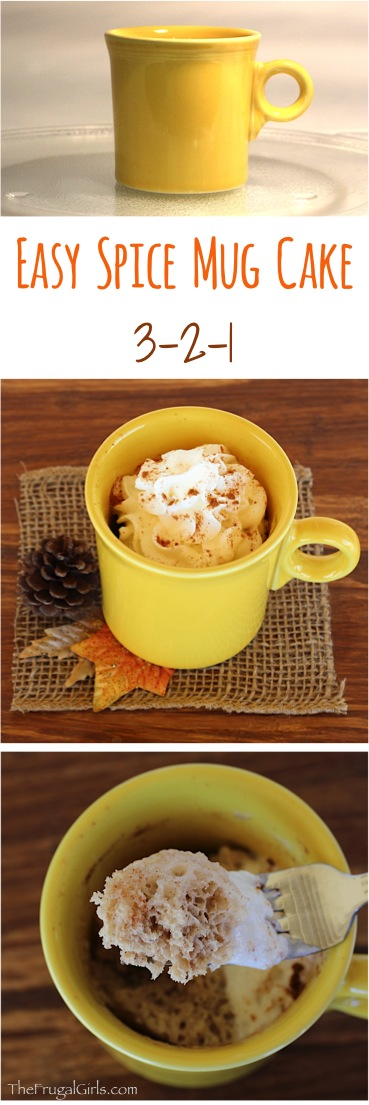 Easy Spice Mug Cake Recipe at TheFrugalGirls.com