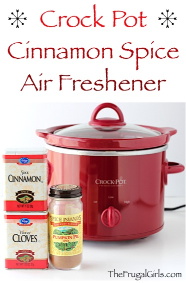 DIY Cinnamon Air Freshener from TheFrugalGirls.com