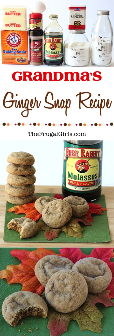 Easy Ginger Snap Recipe from TheFrugalGirls.com