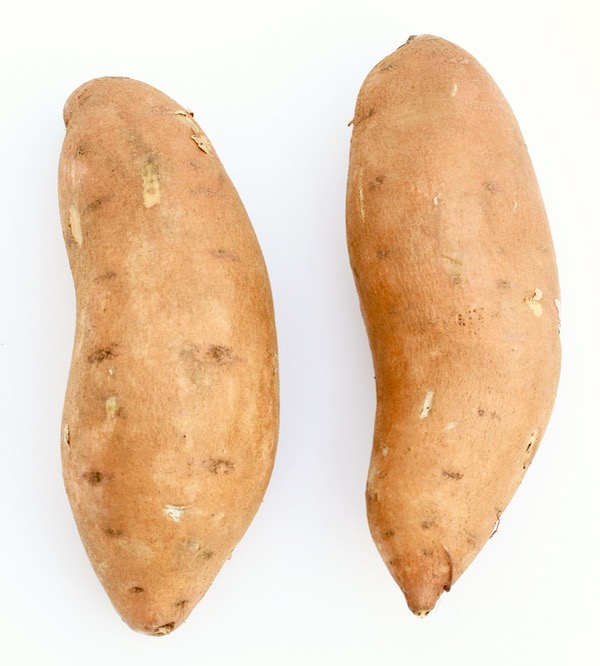 Homemade Baby Food Sweet Potato Recipe at TheFrugalGirls.com
