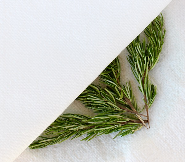 DIY Dried Rosemary Tip from TheFrugalGirls.com