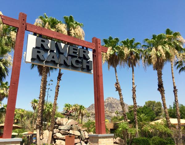 Family Friendly Phoenix Arizona Resort | Tips from TheFrugalGirls.com