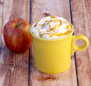Crock Pot Caramel Apple Cider Recipe from TheFrugalGirls.com