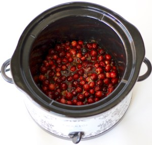 Slow Cooker Thanksgiving Recipes from TheFrugalGirls.com