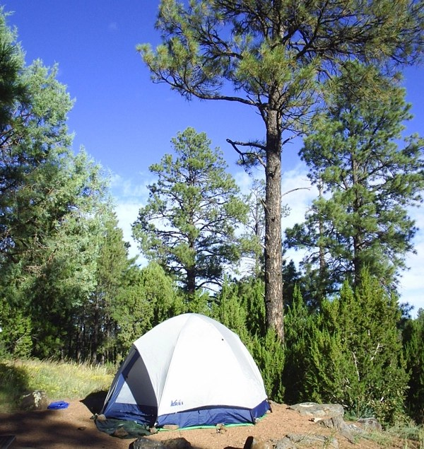 Best Camping Dessert Recipes from TheFrugalGirls.com
