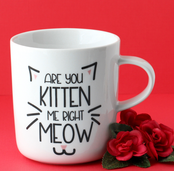 Quirky Gifts for Crazy Cat Lovers! {Santa Claws Approved}