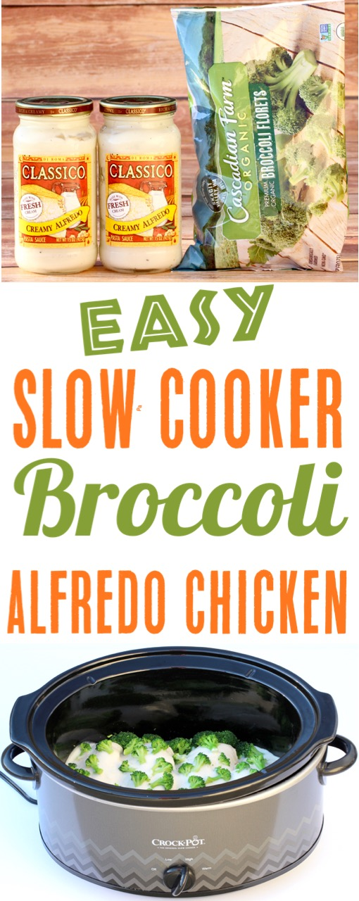 Slow Cooker Chicken Recipes Easy Crockpot Broccoli Alfredo Chicken