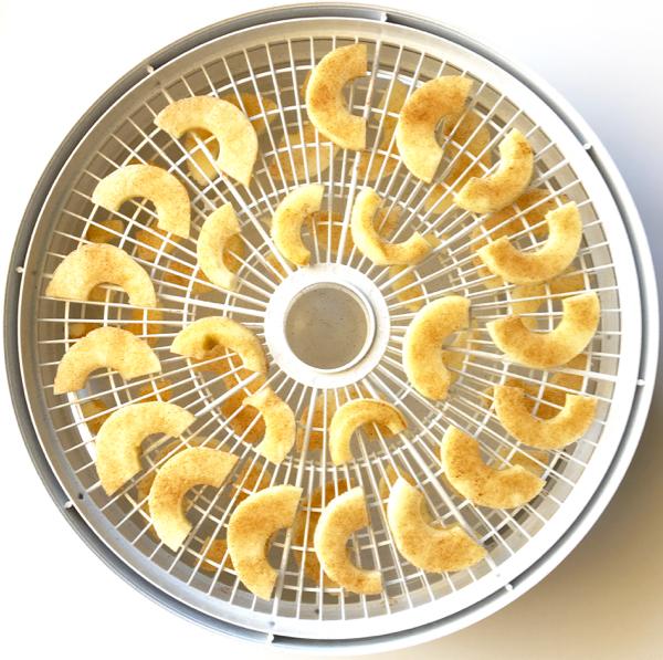 Dried Apple Chips Recipe Cinnamon Sugar