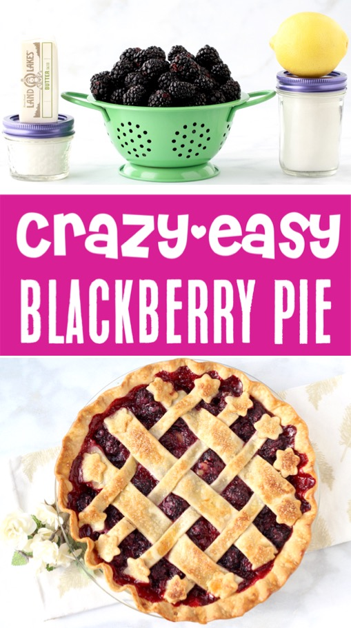 Pie Recipes Easy Thanksgiving Blackberry Pie Recipe