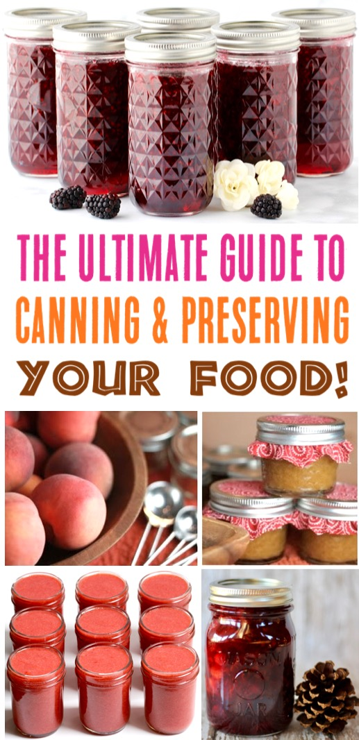 Canning Recipes for Beginners to Pros - Ultimate Guide to Canning and Preserving Your Food