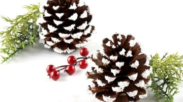 How to Make Epsom Salt Pine Cones Craft