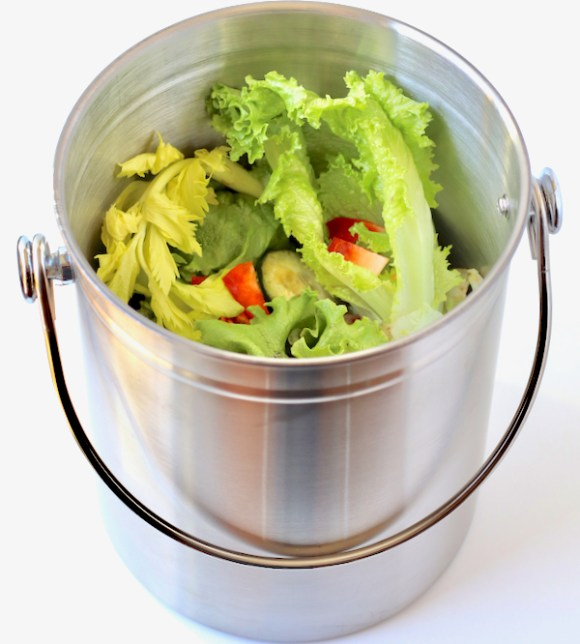 What to Put in a Compost Bin at Home {Composting 101}