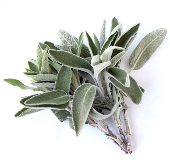 How to Dry Sage in the Microwave Tip