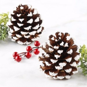 DIY Snowy Winter Wonderland Pine Cones