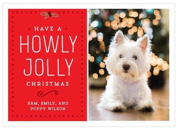 Holiday Cards - Basic Invite