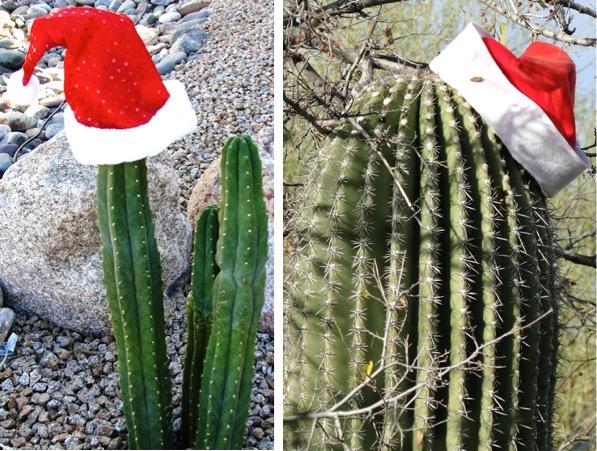 Christmas Decor Ideas Outdoors