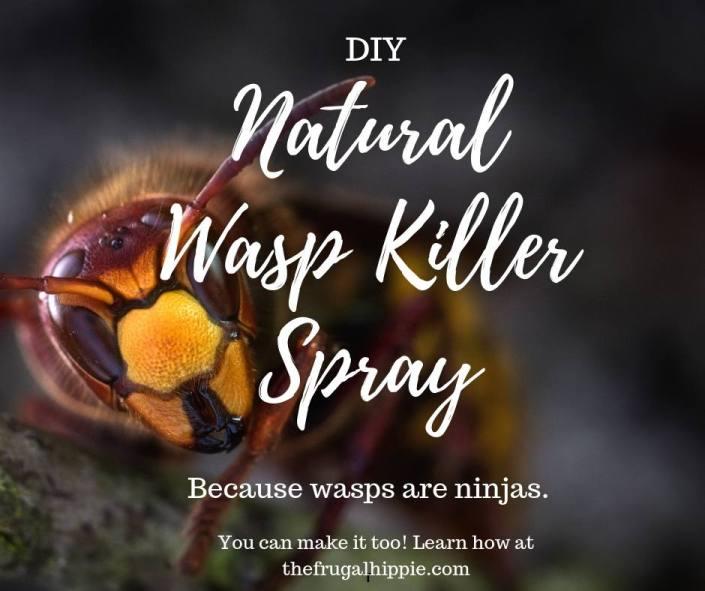 diy natural wasp killer spray