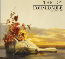 TheJoyFormidable