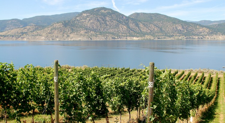 South Okanagan, BC_CC_Keith Ewing_WEB