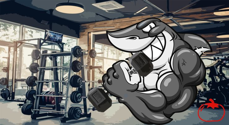 Gym Shark working out