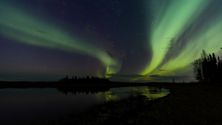Green aurora borealis over a forest and water in Alaska