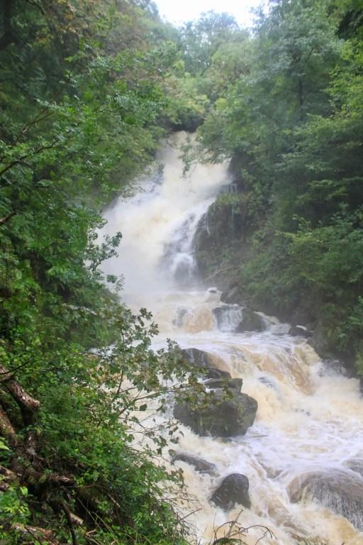 Torc Waterfall rushing through lush green forest