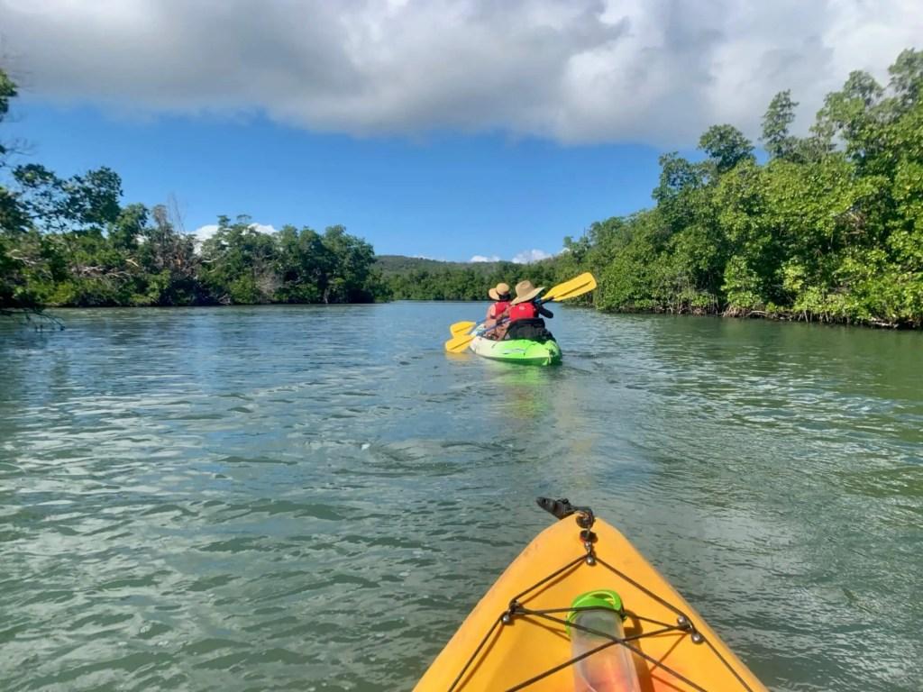 Mom and AB kayaking past mangroves