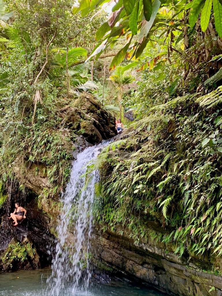 Juan Diego falls surrounded by lush vegetation