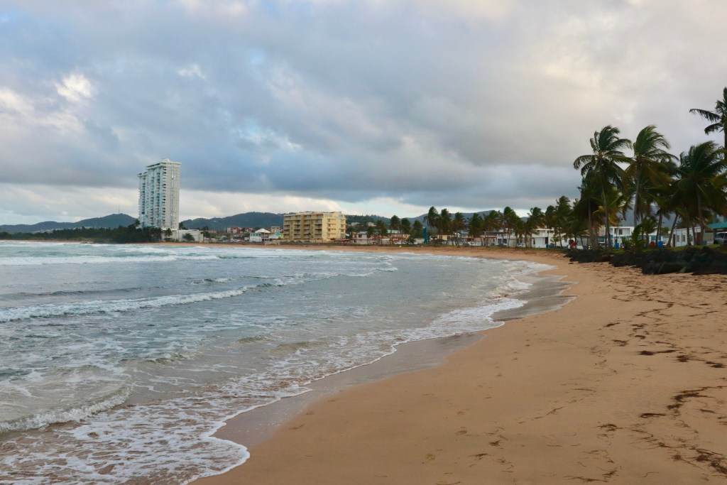 Beachfront with palm trees and town of Luquillo behind