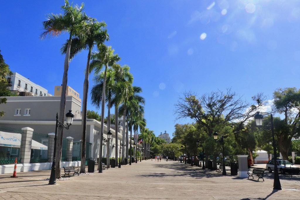 Wide Paseo de la Princesa avenue lined with palm trees