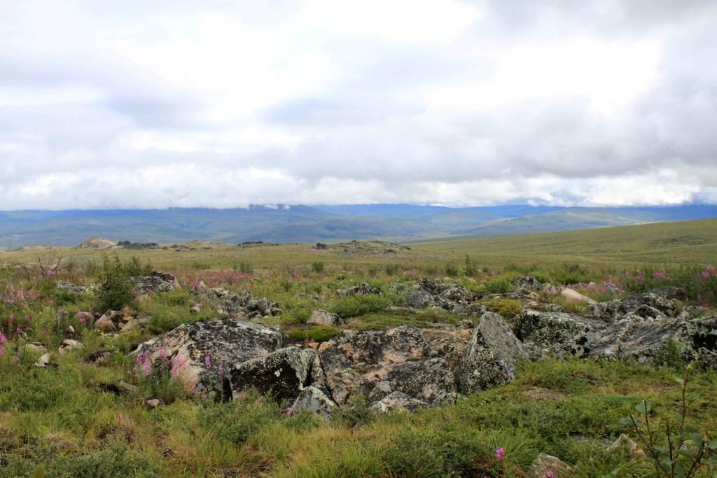 View of Alaskan landscape along the Dalton Highway near Finger Mountain, Alaska