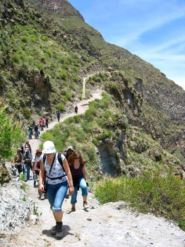 A line of hikers following a winding trail