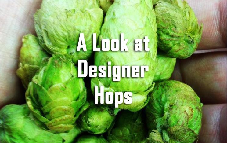 Look at Designer Hops