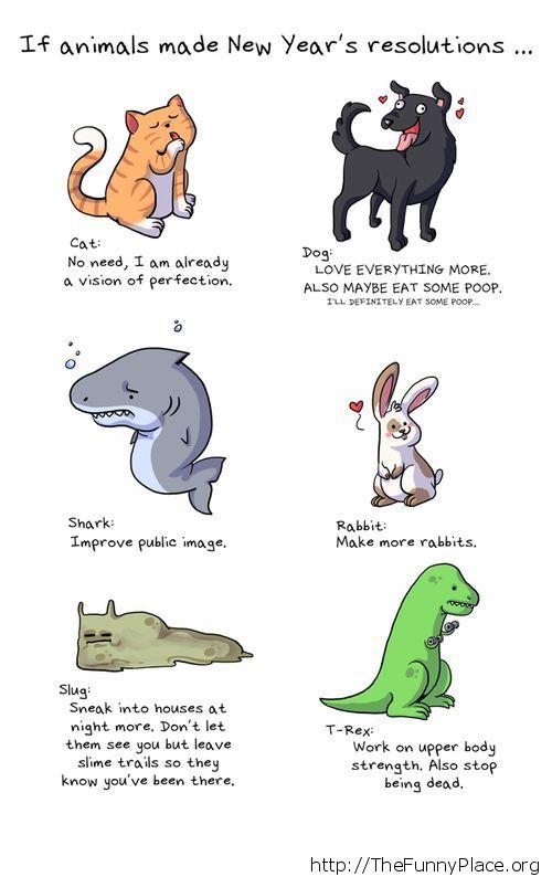 Top 10 Funny Jokes