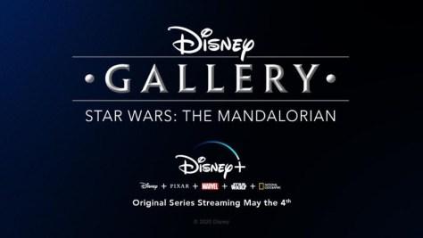 Disney-Gallery-The-Mandalorian