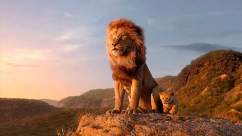 The_Lion_King_006