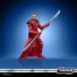 STAR-WARS-THE-VINTAGE-COLLECTION-3.75-INCH-EMPORERS-ROYAL-GUARD-Figure-oop-6