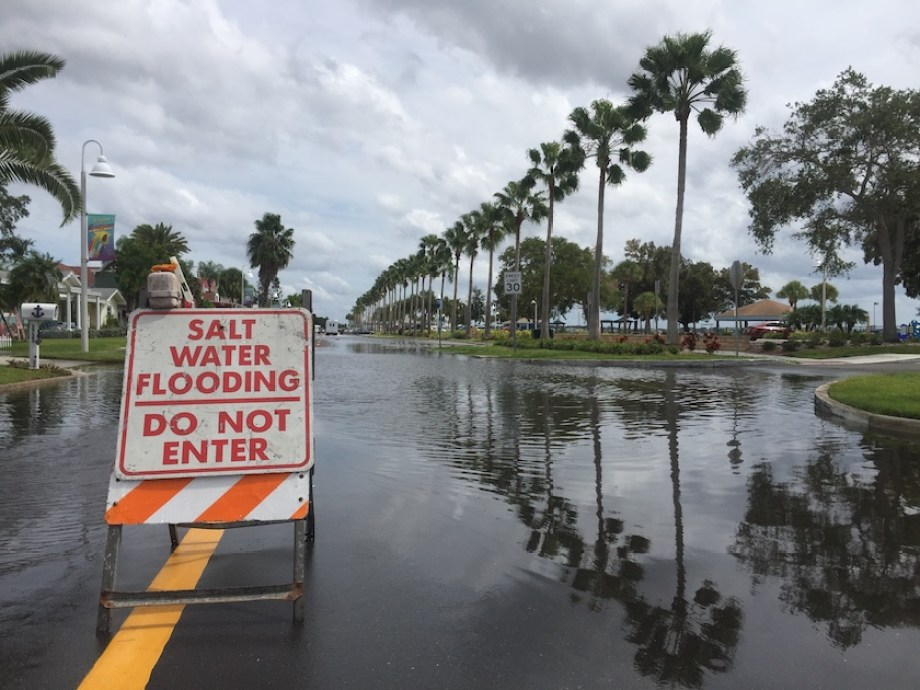 "A flooded street with a ""Saltwater Flooding Do Not Enter"" Sign"