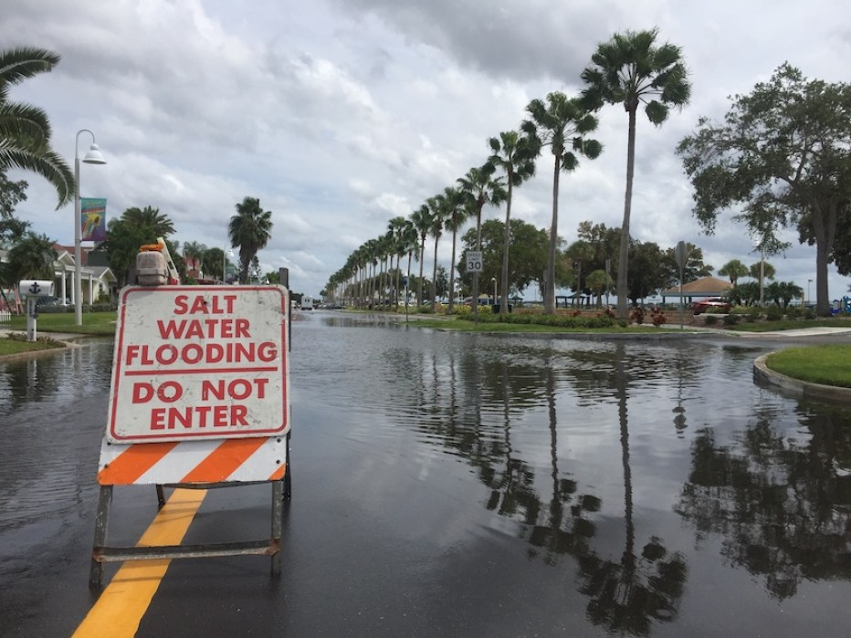 """A flooded street with a """"Saltwater Flooding Do Not Enter"""" Sign"""