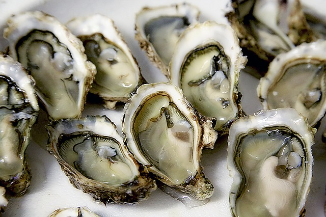 Oysters on half shell on tray of ice