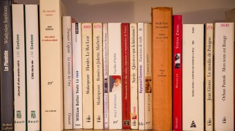 A bookshelf lined with multiple books/literary works.